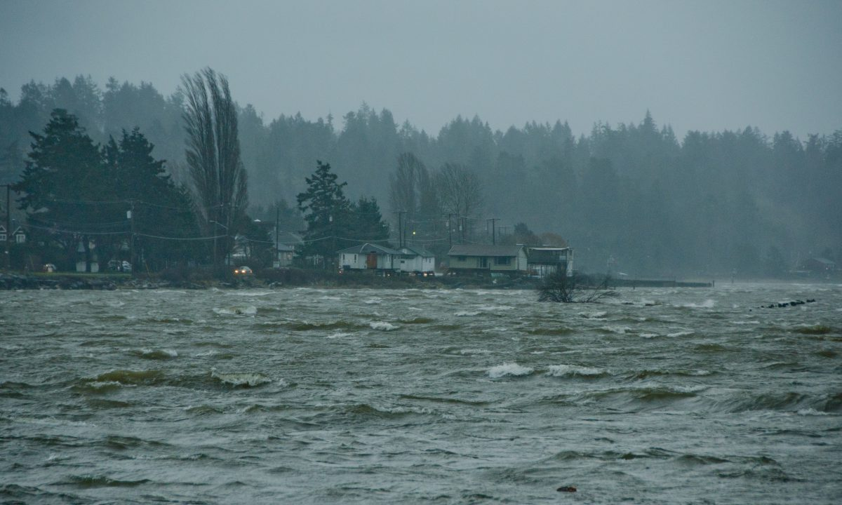 Wind Warning in effect for Courtenay and Campbell River - My Comox Valley Now